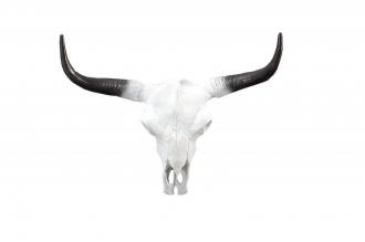 skulptura EL TORO 50-CM WHITE
